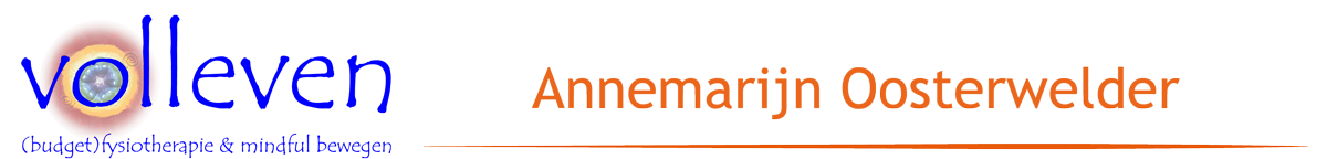volleven Logo